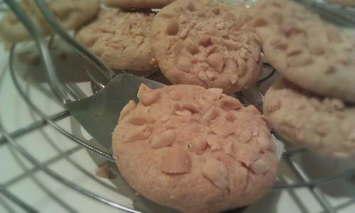 Een aantal koekjes half gestapeld op een koelrek, wat pinda's die er afgevallen zijn er onder. Een koekje ligt op een klein metalen koekjesspatel.