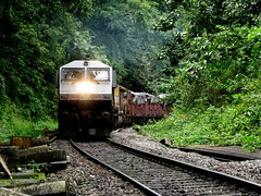 Through the lush green (Jayfotographia) Tags: india tourism trekking goa trains karnataka trainspotting indianrailways dudhsagar irfca diesellocomotives dudhsagarwaterfalls doodhsagar braganzaghats jayasankarmadhavadas