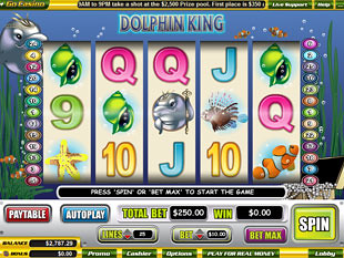 Dolphin King slot game online review