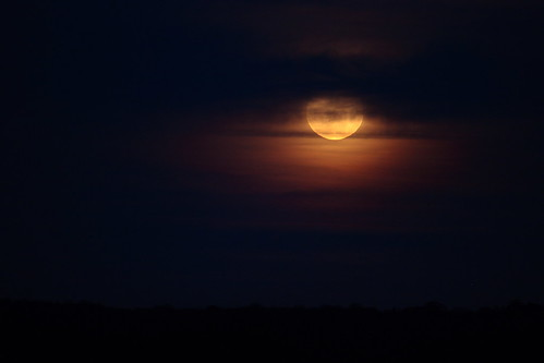 Picture of Supermoon - #8