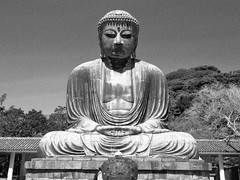 continue to pray (hamapenguin) Tags: statue japan buddha kamakura nationaltreasure   greatbuddha