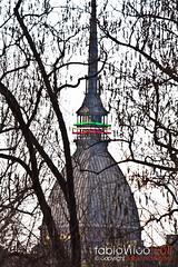 150 anni (fabionico) Tags: verde torino italia 150 mole turin rosso bianco tricolore unit antonelliana fabionico