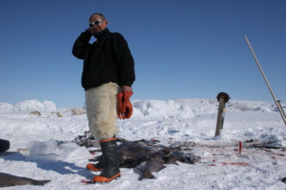 Fieldwork on Greenland III