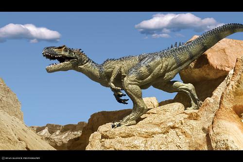 Desert Predator