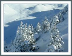 Argulls 1 (Eloy Rodrguez (+ 4.000.000 views)) Tags: christmas xmas winter snow ski nature spain skiing hiver nieve val invierno neige beret eloy baqueira lleida esqui valdaran daran baqueiraberet valldaran pladeberet valdearan argulls lavalldaran nautaran eloyrodriguez eloyrodrguez mygearandme mygearandmepremium viehlla mygearandmebronze mygearandmesilver mygearandmegold mygearandmeplatinum mygearandmediamond rememberthatmomentlevel4 rememberthatmomentlevel1 rememberthatmomentlevel2 rememberthatmomentlevel3 rememberthatmomentlevel9 rememberthatmomentlevel5 rememberthatmomentlevel6 rememberthatmomentlevel10