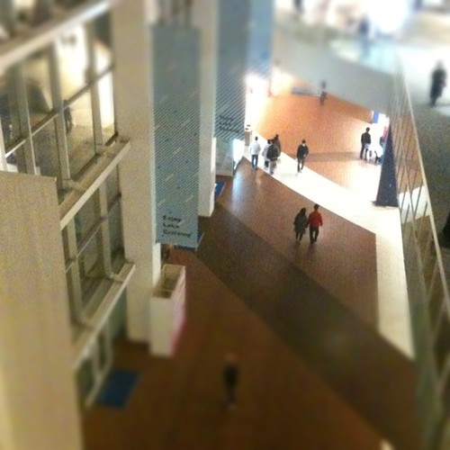 iPhone 3GS + instagram tilt-shift