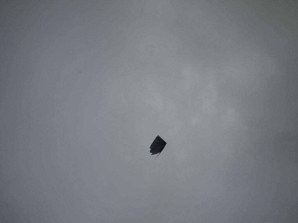 Kite 7