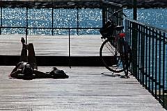 All'ombra dell'ultimo sole (meghimeg) Tags: 2016 rapallo molo sole sun allaperto suntan abbronzatura uomo man bici bicicletta bike mare sea