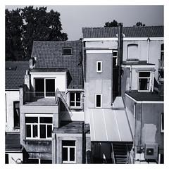 Roofs and Windows (Gretsch*) Tags: bruxelles brussels belgium belgique leicam240 leicasummicronm1235asph noirblanc blackwhite