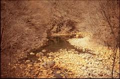 (bensn) Tags: pentax lx industar 50mm f35 film slide astia 100f japan gunma river water rocks mountains branches trees reflection