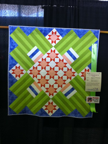 2011 Dallas Quilt Show- solids