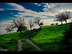 Gloomy (DomenicoM82) Tags: italy parco del al italia pentax da sdm if smc alto calabria f4 nazionale cosenza jonio ionio pollino trebisacce 1770mm