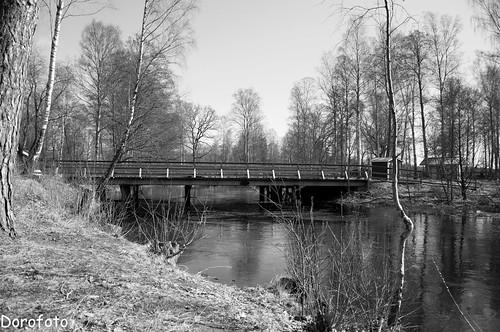 Bridge by Rune Mo