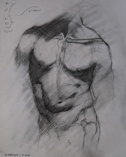 RLiberace Anatomy of Torso wkshop - 1