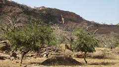 West Africa-2397