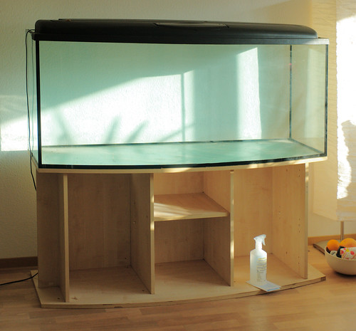 420 litre: the new glass box by KittyKat3756