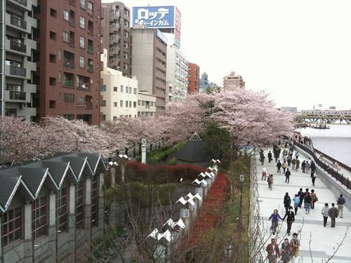 隅田公園(浅草の水上バス乗り場)