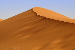 The Sand (TARIQ-M) Tags: blowingsand