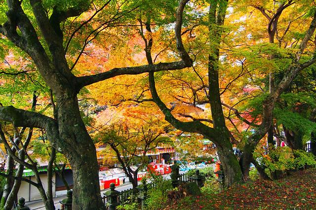 20101120_084738_談山神社