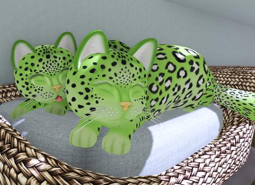 Leprecats