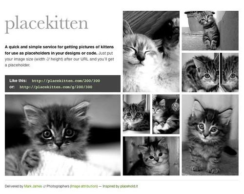 placeKitten