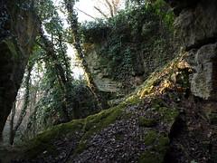Strangenberg 11 (Ormelune) Tags: mars france nature frankreich olympus alsace paysage colline balade calcaire e510 faille 2011 hautrhin géologie érosion ruissellement strangenberg prévosges