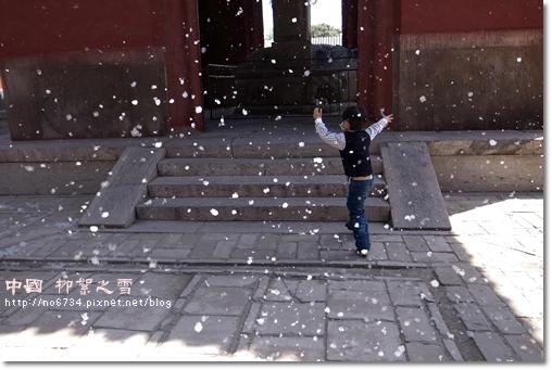 20110414_ChinaShanXi_3582 f