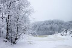 ©Reidar_Nygård_26 (Konsulent1) Tags: vinter snø sn elv sn¿