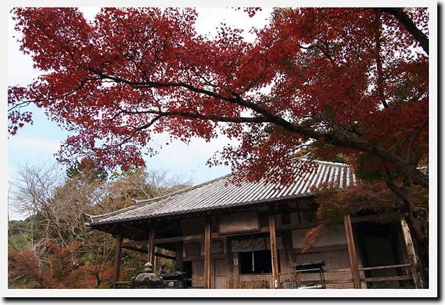 20101120_110156_栄山寺_本堂