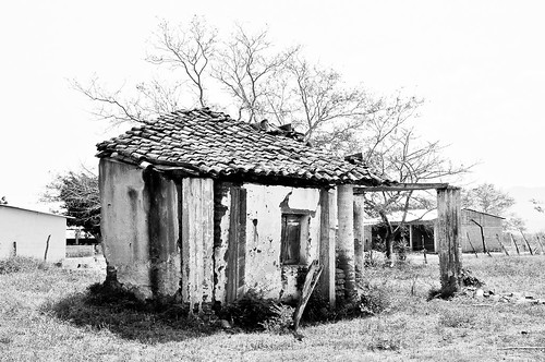 La Finca abandonada (10)