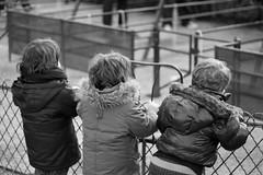 les 3 freres ('^_^ Damail Nobre ^_^') Tags: france art love canon word french fun photography photo reflex europe photographie picture 7d franais francais photographe dfn originaliphoto damail francais wwwdamailfr