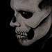 bw web skull natasha kertes