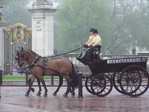 Carriage outside Buckingham Palace