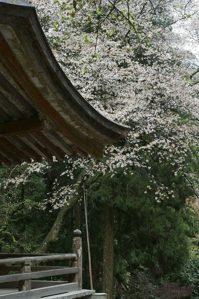 Muro-ji 2
