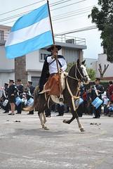 19_abril_1210 (fotosenjujuy) Tags: horse argentina caballo nadia desfile bandera jujuy gaucho argentinos lazos 19deabril monturas jujeo bajolavia gauchaje donosa sanjosedechijra pialdereyes
