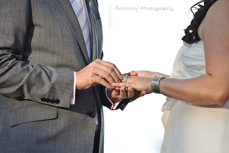 Julia & Sean's Wedding - With this ring I thee wed....