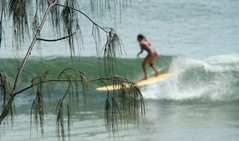 cruising @ Noosa National (Nalu Images) Tags: classic sunshine coast surf lily australia surfing longboard heads noosa longboarding branger