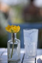 @Overleek ... (Berta...) Tags: teagarden waterland overleek