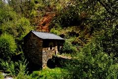 home (Izaskun G. Obieta) Tags: home casa leon bosque bierzo castilla maleza
