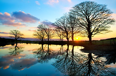 Sunset on the Isle of Man (IMAGES FROM MAN.) Tags: blue trees sunset orange sun colour reflection nature water clouds relax pond nikon raw wintersunset tranquil cloudscape isleofman manx 1755f28 d7000 raycollister