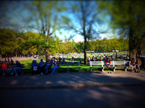 Busy day in Central Park