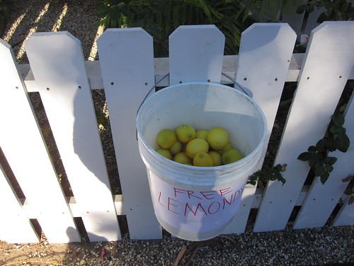free 'lemonds'