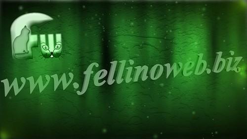 fellinoweb2_sd
