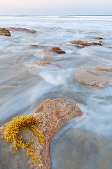 Palm Coast (scifitographer) Tags: ocean sunset seaweed beach rock canon coast florida may wave palm atlantic fl 2011 bethanthony 5dmkii canon2470ml retroreflectography