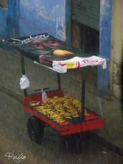 lluvia 10 (rubioquilla) Tags: water frutas rain fruit lluvia agua colombia banana fruta banano rubio barranquilla quilla curramba