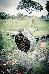 Indonesia_2011-5
