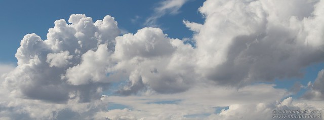Panorama - Puffy Clouds