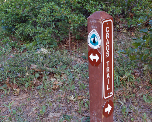crags trail crosses PCT.jpg