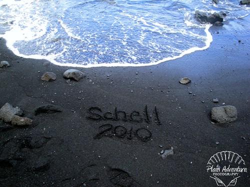 Schell 2010 Black Sand