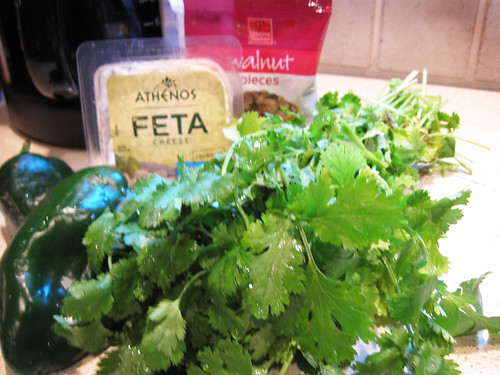 Ingredients for Cilantro Pesto